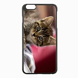 iPhone 6 Plus Black Hardshell Case 5.5inch - kitten muzzle striped scared small Desin Images Protector Back Cover