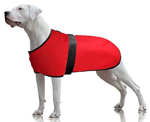 Barn Dog Coat - 7