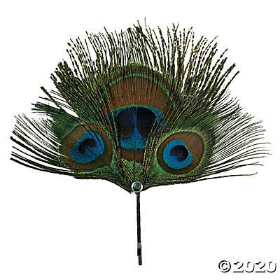 Pretty Peacock Feathers- 24 Pc - Crafts for Kids and Fun Home Activities: Toys & Games