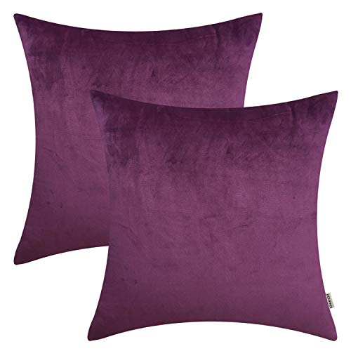 HOMFINER 20x20 inch Pack of 2 Quality Velvet Decorative Throw Pillow Cases Cushion Covers Soft Solid for Couch Bed Sofa Eggplant Purple