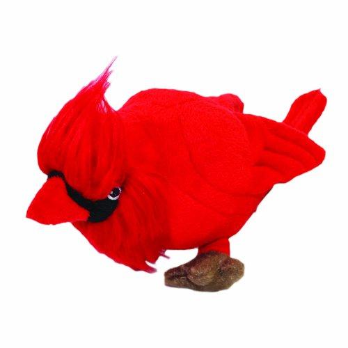 mighty-jr-nature-cardinal