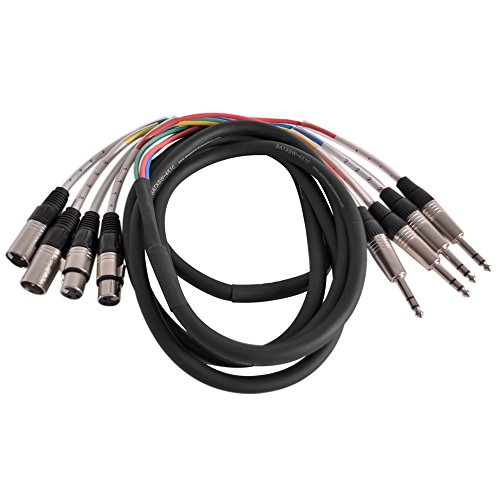 Seismic Audio SATXSW-4x10 2-Channel 10-Feet Insert Snake Cable 4 TRS to 2 XLR Male and 2 XLR Female - 10 Channel Audio