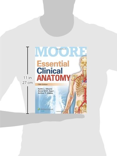 Buy Essential Clinical Anatomy Book Online at Low Prices in India ...