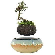 High Tech Magnetic Levitating Air bonsai Ceramic Flower Pot Floating Bonsai Pots Best Gifts for Men (volcanic stone pot)
