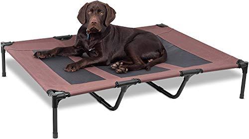 Internet's Best Dog Cot