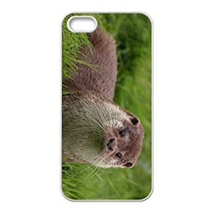 Otter in Glass Hight Quality Plastic Case for Iphone 5s