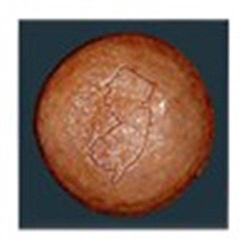 Ceramic Taylor Coasters - CafePress - Taylor Ham - Tile Coaster, Drink Coaster, Small Trivet