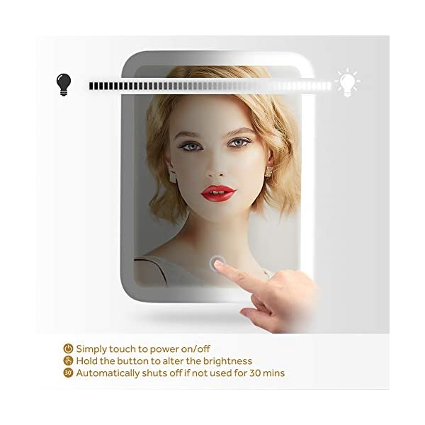 Lavany Makeup Vanity Mirror with 37 LED Lights, Ultra Bright 1100 Lumens Cosmetic Mirror with 10x Magnification, 180¡ã Adjustable Rotation, CRI 88, Dimmable, Battery or USB Powered