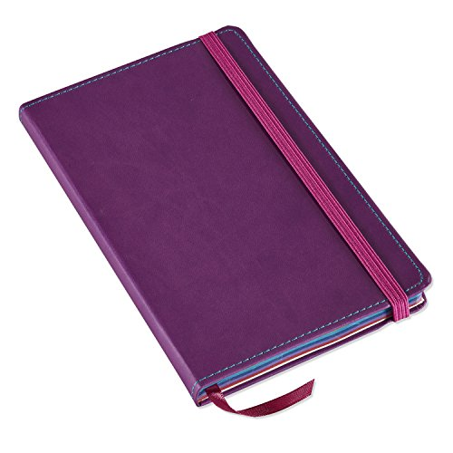 "Leatherette Journal (Astrobrights Italian Leatherette Journal, 5.25"" x 8.5"", Purple, 240 Pages (98833))"