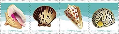 USPS Seashells Postcard Stamps, Roll of 100