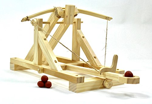 (Pathfinders Roman Catapult Model)