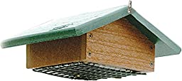 Audubon Going Green Suet Bottom Feed Style Feeder Model NAGGSBF