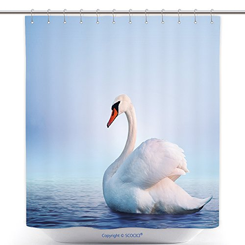Mildew Resistant Shower Curtains White Swan In The Foggy Lake At The Dawn Morning Lights Romantic Background Beautiful Swan 497586220 Polyester Bathroom Shower Curtain Set With Hooks