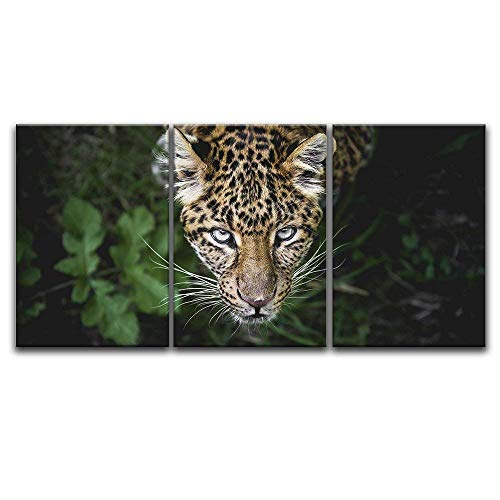 3 Panel Leopard in The Wild x 3 Panels