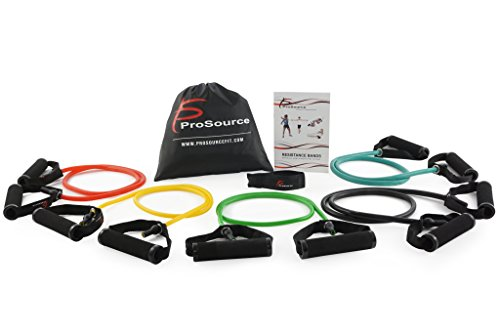 (Prosource Fit Tube Resistance Bands Set with Attached Handles, Door Anchor, Carrying Case and Exercise)