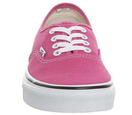 Pink Authentic True White Vans Hot TqEwvzxAX