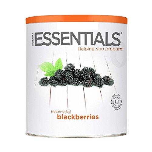 Emergency Essentials Freeze Dried Blackberries product image
