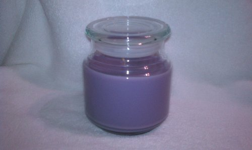 Cool Tropical Breeze Soy Wax Candle 16oz (Purple)