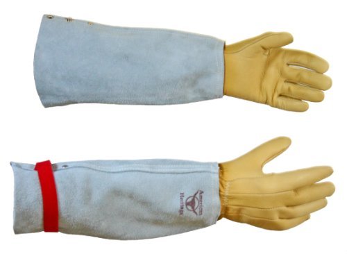 The Protector Rose Gauntlet Gloves