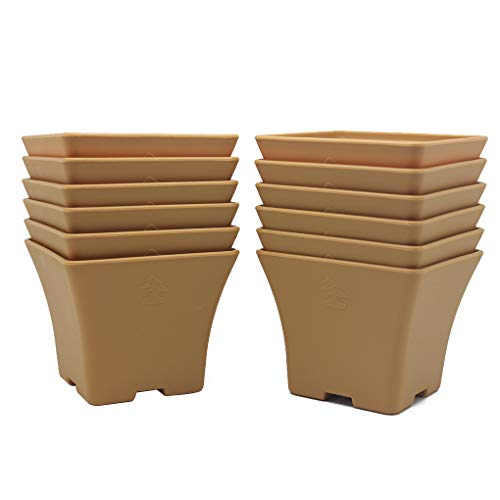 BangQiao 4.60 Inch Plastic Square Flower Plant Pots Container with Drainage Hole, Pack of 12, Terracotta ()