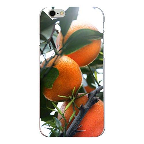"""Disagu Design Case Coque pour Apple iPhone 6s Housse etui coque pochette """"Orangenbaum"""""""