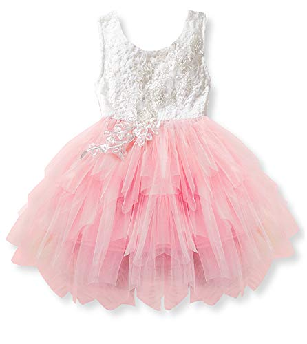 (GSVIBK Baby Girls Tutu Dress Toddler Tulle Tutu Dress Infant Tulle Dresses Princess Party Dress 360 Pink)