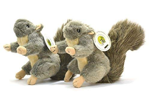 Twin-Pack! Realistic Plush Squirrel Dog Toys with Squeakers for Interactive Play / Training Medium Size (9-inch)Hunting Dog Approved! Sancho & Lola's Closet Supporting Rescue Dogs Since 2015!