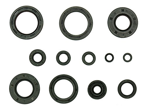 Outlaw Racing OR3523 Engine Oil Seal Kit Yamaha YZ125 2001-2004 Motorcycle Dirtbike MXC (Oil Yz125)