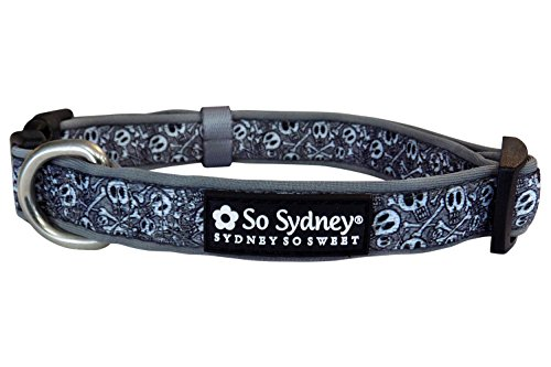 So Sydney Pet Halloween Fall Holiday Collection Adjustable Dog Collar 5' Leash (M Collar, Spooky Skull) ()