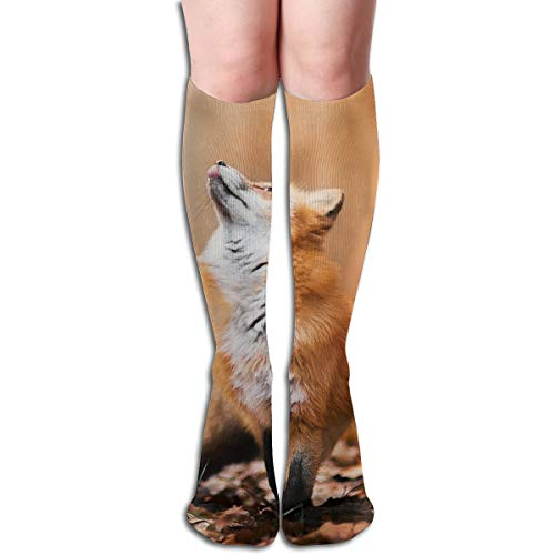 (Bandnae 19.68 Inch Compression Socks Fox Autumn Animal High Boots Stockings Long Hose for Yoga Walking for Women Man)