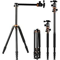 K&f Concept Camera Tripod 66 Inch 4 Section Professional Tripods With 360 Degree Ball Head Quick Release Plate for Canon Nikon Sony DSLR (Orange)