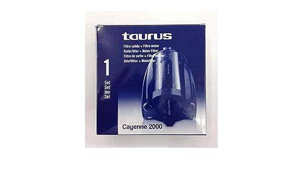 Taurus - Set Filtro 999158, Para Aspirador Cayenne 2000: Amazon.es ...