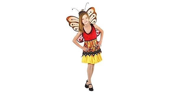 Disfraz de Mariposa niña infantil para Carnaval 4-6 años: Amazon ...