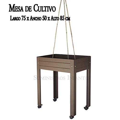 MESA DE CULTIVO COMPLETA Lacada marrón. Medidas: Largo 75cm x ...