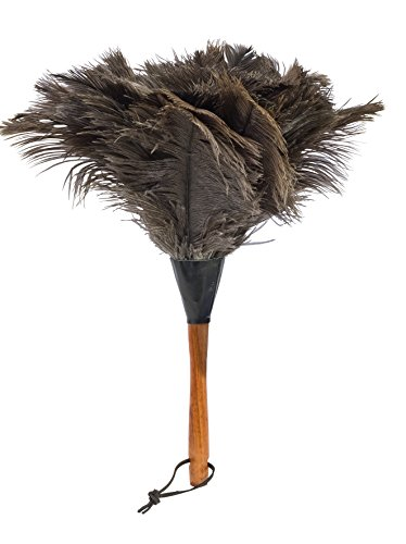 REDECKER Ostrich Feather Duster with Varnished Wooden Handle, Small, 13-3/4-Inches