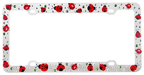 Amazon.com: Lady Bug Clear Plastic Frame with White and Green ...