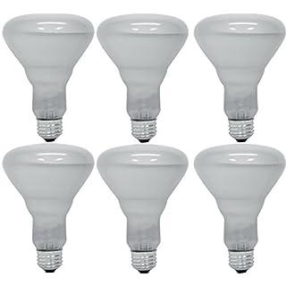 Pack of 6 65BR30/FL 65 Watt BR30 Reflector Incandescent E26 Medium Base 120 Volt Indoor Flood Light Bulb