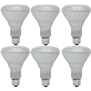 Pack of 6 65BR30/FL 65 Watt BR30 Reflector Incandescent E26 Medium Base 120 Volt Indoor Flood Light Bulb 20