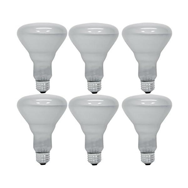 Pack of 6 65BR30/FL 65 Watt BR30 Reflector Incandescent E26 Medium Base 120 Volt Indoor Flood Light Bulb 1