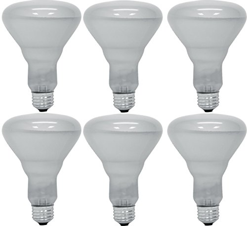 Pack Of 6 65BR30/FL 65 Watt BR30 Reflector Incandescent E26 Medium Base 120 Volt Indoor Flood Light Bulb