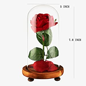 YSBER Beauty & The Beast Red Silk Rose and LED Light with Fallen Petals in Glass Dome on a Wooden Base for Lover, Mother, Girlfriend 4