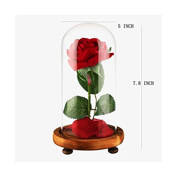 YSBER-Beauty-The-Beast-Red-Silk-Rose-and-LED-Light-with-Fallen-Petals-in-Glass-Dome-on-a-Wooden-Base-for-Lover-Mother-Girlfriend