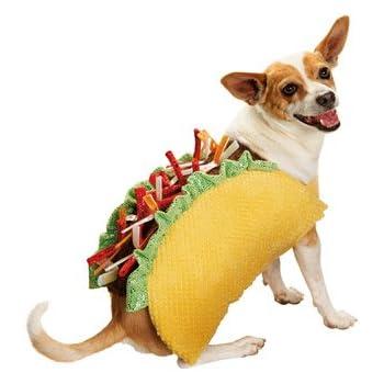 Amazon.com : Taco Halloween Dog Costume, Small : Pet Supplies