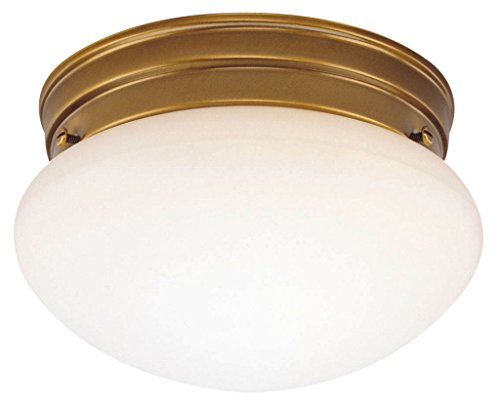 (Westinghouse Lighting 6668100 One-Light Flush-Mount Interior Ceiling Fixture, Antique Brass Finish with White Glass)