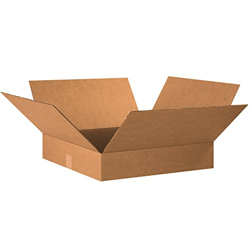 Boxes Fast BF20204 Corrugated Cardboard Flat Shipping Boxes, 20
