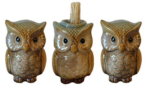 (Hand-painted Ceramic Owl Salt & Pepper Shakers | Toothpick Holder Kitchen Decor Gift Set.)