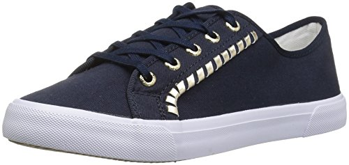 Women's Canvas Sneaker Jack Carter Fashion Rogers Midnight pqAAwH5