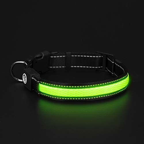 HongTu LED Flourescent Dog Collar for Night Visible Safety Walking,USB Rechargeable,3 Mode Glowing Flashing Light (L(19