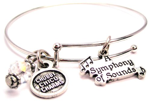 A Symphony of Sounds Adjustable Wire Bangle Charm Bracelet Single Stacker