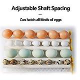 JAEDO Automatic Egg Incubator 96~128 Eggs Poultry